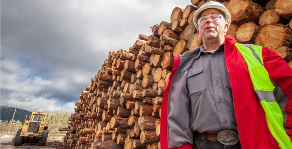 IFG Forester Doug Bradetich says they use 100 percent of the timber that comes into the mills