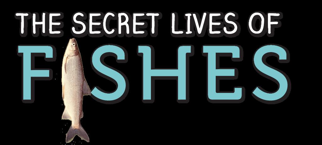 Secret-lives-of-fishes